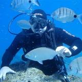 Diving on Lanzarote, Playa Blanca, 6m deep